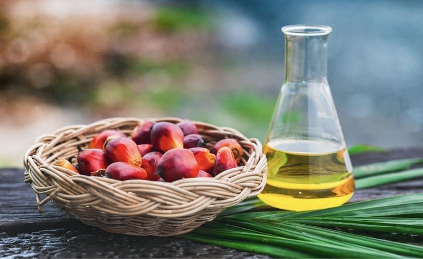 palmöl ungesund und schädlich